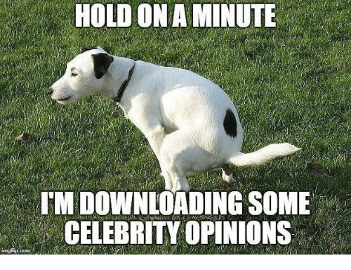 celebrity opinions.png