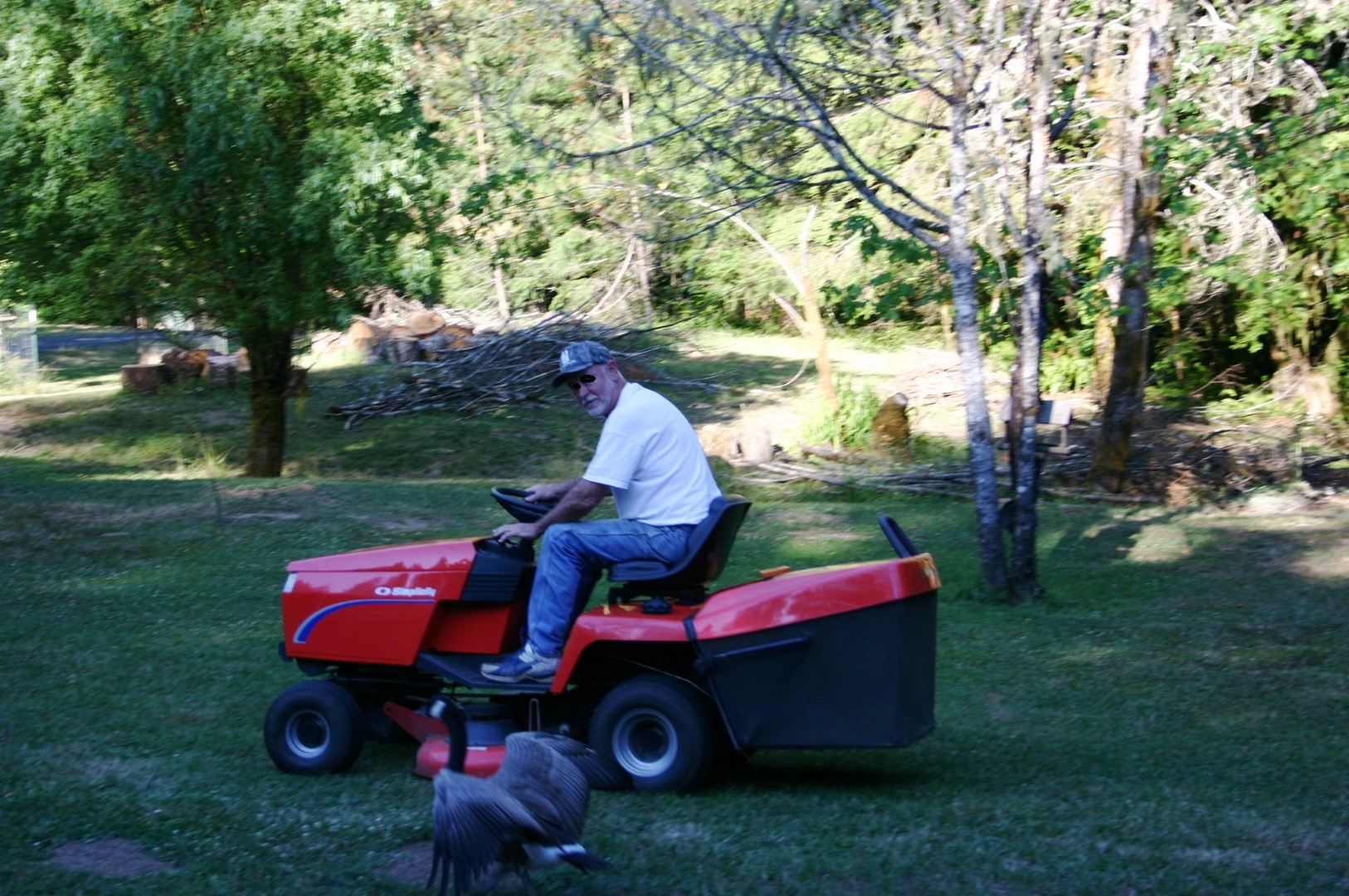 JOE & LAWNMOWER 004 - Copy (Large).jpg