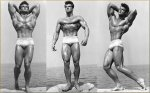 Defining Aesthetics_ What Exactly Is The Perfect Physique_.jpg